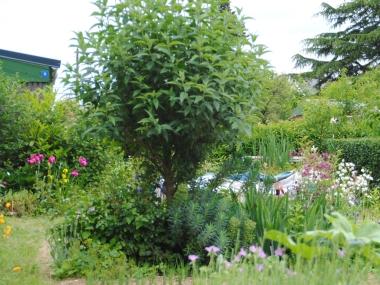 Jardin familial ouvrier à Rennes